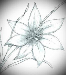 Фото эскизы тату цветы 13.09.2019 №017 - flower sketch designs - tattoo-photo.ru