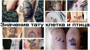 Значение тату клетка и птица - факты про особенности рисунка татуировки и фото примеры готовых тату работ