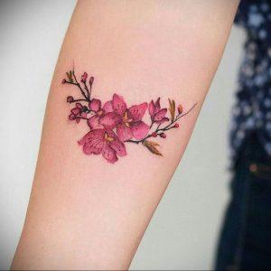Фото вариант тату сакура для девушки 09.02.2020 №003 -sakura tattoo- tattoo-photo.ru