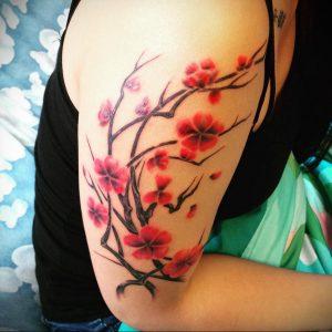 Фото тату цветок закуры 09.02.2020 №067 -sakura tattoo- tattoo-photo.ru