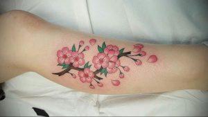 Фото тату цветок закуры 09.02.2020 №074 -sakura tattoo- tattoo-photo.ru