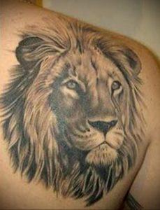 Фото тату на лопатке Лев 09.03.2020 №005 -tattoo on the shoulder- tattoo-photo.ru